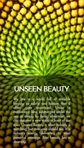 unseen-beauty-ing-1